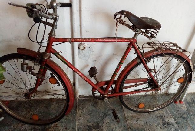 Bicicleta pasteleira homem