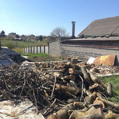 Спил, удаление деревьев разной сложности.Уборка участка.