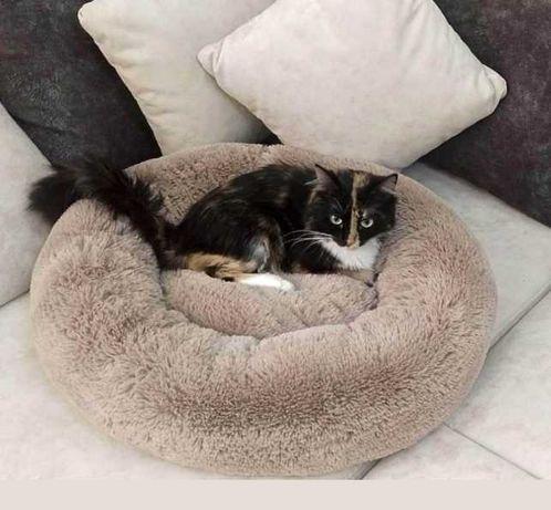 Распродажа лежанка лежак домик для кота кошки собачки от производителя