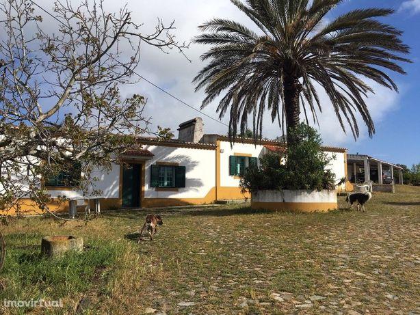 Quinta 18 640 m2 | Habitação | Piscina | Baixo Alentejo