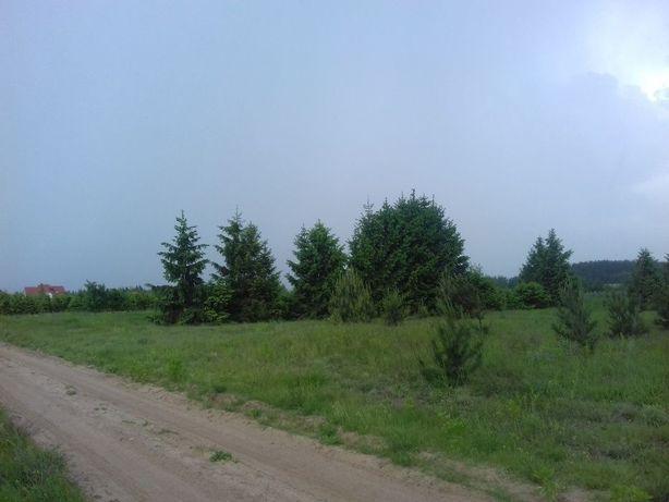 Działka siedliskowa Krze Duże ul. Akacjowa