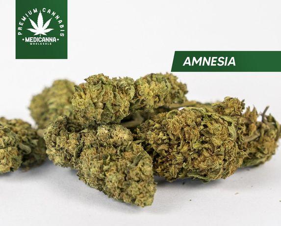 Susz CBD HURT Amnesia