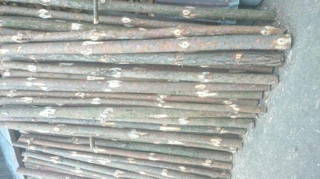 Stęple budowlane sosnowe
