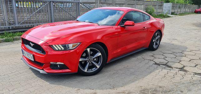 Wynajem Ford Mustang 3.7 V6 Wynajmę Wypożyczalnia samochodów