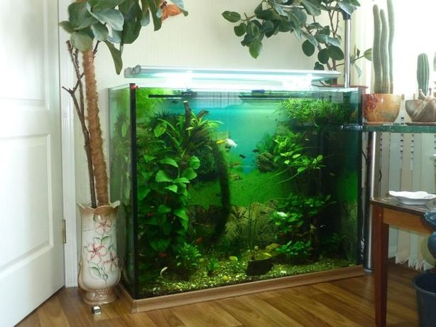 аквариум 400л,эксклюзив.