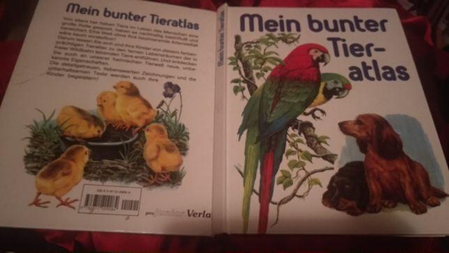 книга немецкий язык атлас животные mein bunter tier-atlas Deutsch