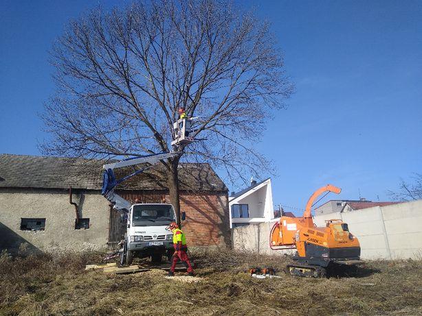 Wycinka Drzew Czyszczenie Koszenie Działek Usługi Rębakiem