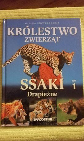 Książka Królestwo zwierząt tom 1 ssaki drapieżne