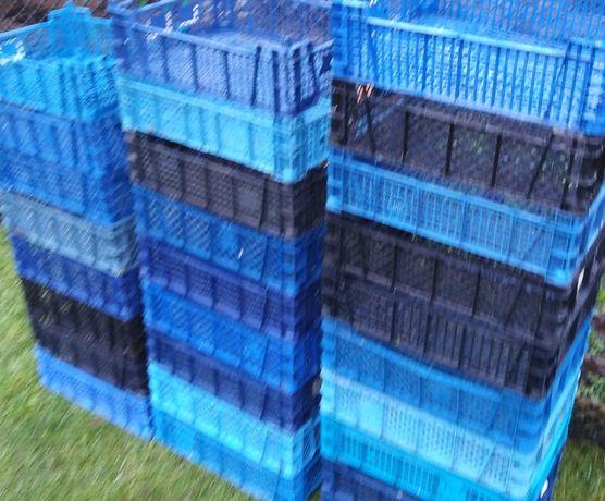 Skrzynki plastikowe 40 sztuk