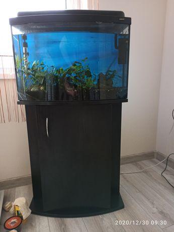 Akwarium z pełnym wyposażeniem