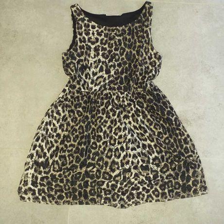 Sukienka w panterke H&M
