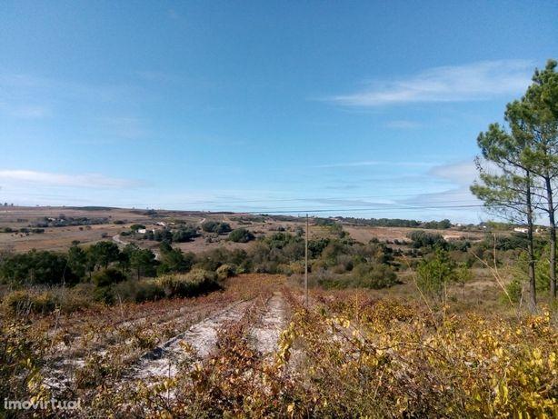 Terreno rústico Castelãs em Aljezur_817Lg