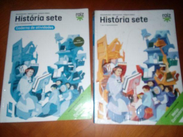 História sete Raiz Editora