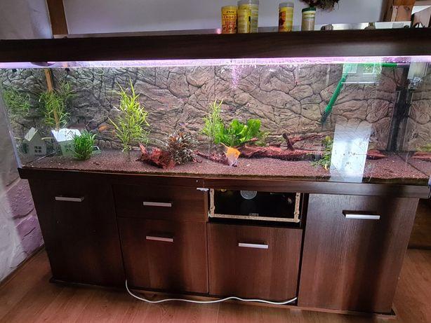 Akwarium 700l, filtry