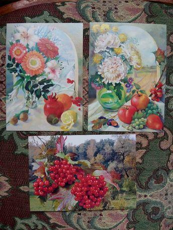 """Поштові листівки """"Квіти"""", """"Натюрморт Літо!"""", """"Калина"""" 2001р."""