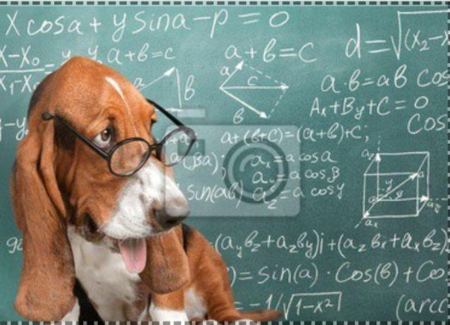 Matematyka korepetycje do matury
