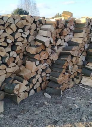 Продам дрова дуб! Доставка бесплатная Киев и область! от 3 куб.