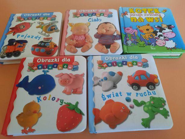 Zestaw małego czytelnika - książeczki dla dzieci