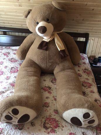 Плюшевий ведмідь