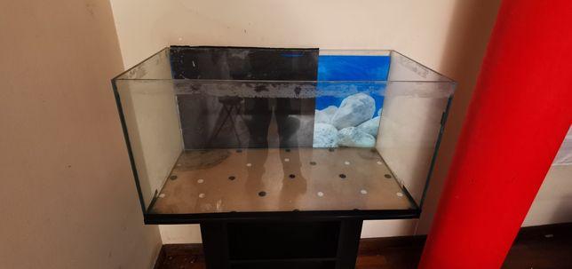 Vendo aquário com movel