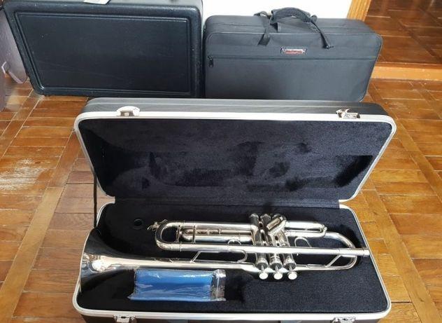 Труба BACH LT180S-43