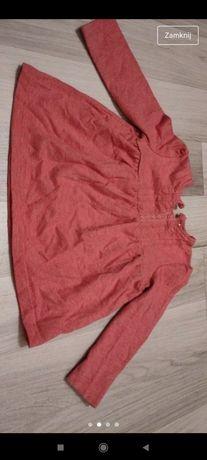 Body, bluzeczki 74/80