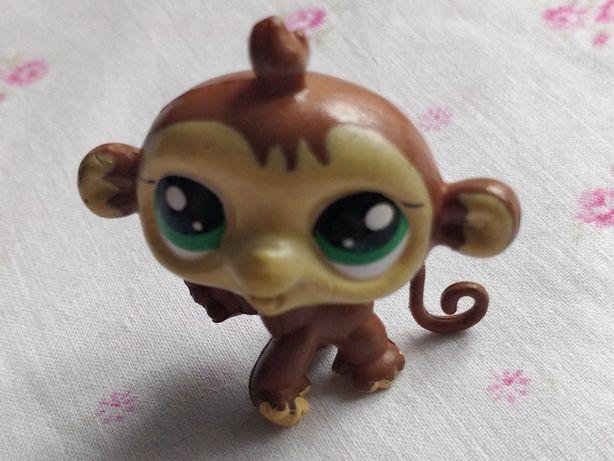 Figurka małpki jak Littlest Pet Shop - LPS
