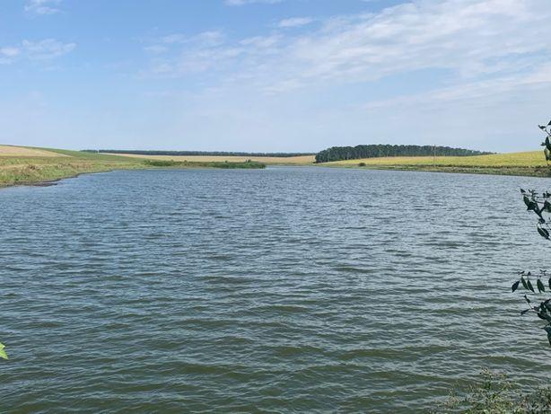 Продажа рыбного хозяйства в Жашковском р-не, Черкасская обл.
