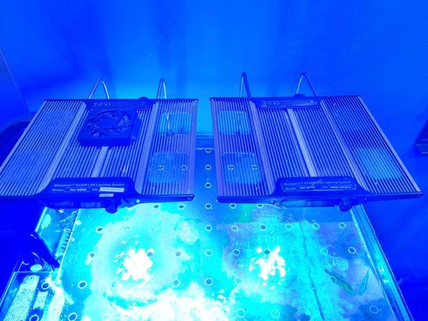 Lampa MAXSPECT RAZOR 420R - akwarium morskie