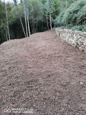 Limpeza de terrenos agrícolas e florestais, jardins, etc