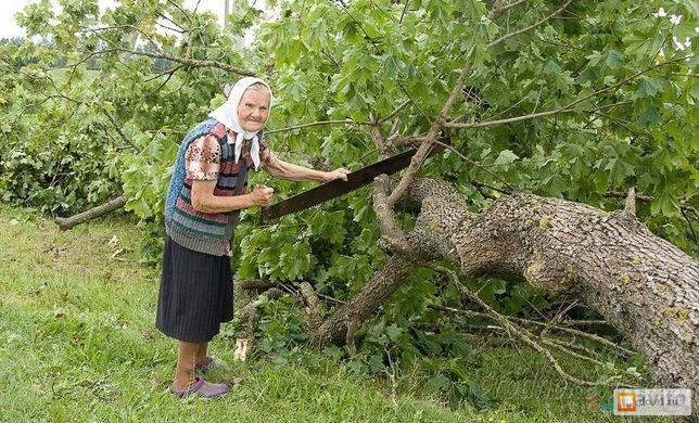 Спил деревьев, копка огородов, траншей и другое