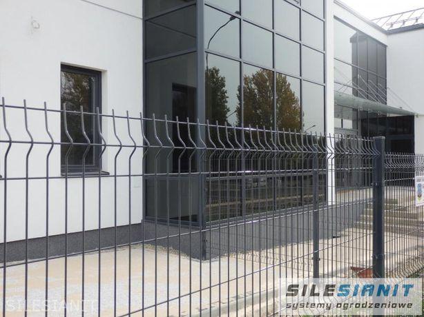 Panel ogrodzeniowy Panele ogrodzeniowe 1,33m + RAL