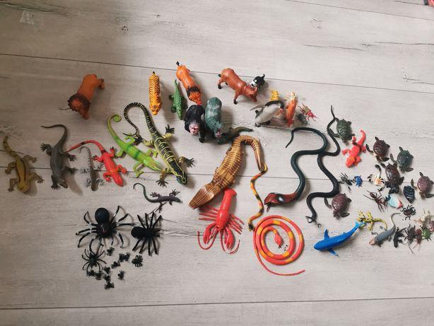 Zestaw figurek figurki zwierzęta