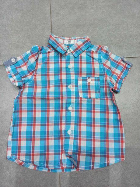 Koszula z krotkim rekawkiem pepco, roz. 74