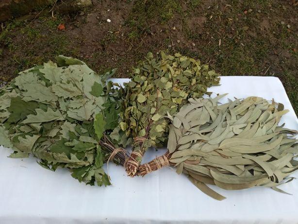 Продам веники для бани: дубовые, березовые, из канадского дуба
