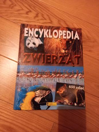 Album -Encyklopedia zwierząt.