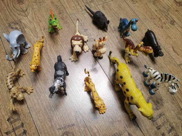 Звери, коллекция зверей