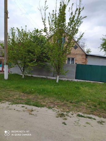 Продам дом в селе Шостаковка