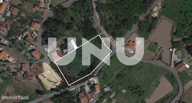 Lote de Terreno  Venda em Pinheiro da Bemposta, Travanca e Palmaz,Oliv