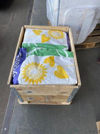 Сингента Купава семена подсолнуха насіння соняшнику подсолнечника