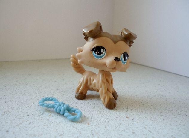 Littlest Pet Shop - Collie #893