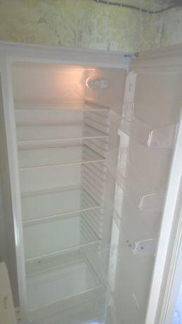Chłodziarka 300 litrów 170 cm wys na 55 szeroka Boomann Lodówka