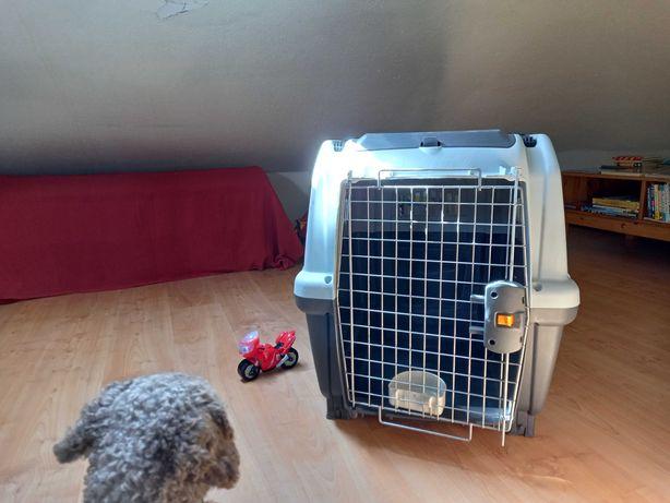 Caixa de transporte de cães Skudo 5