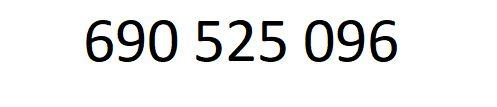 złoty numer - palindrom