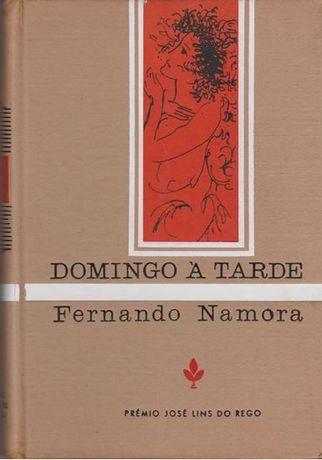 Domingo à tarde / Fernando Gonçalves Namora 1ª Edição