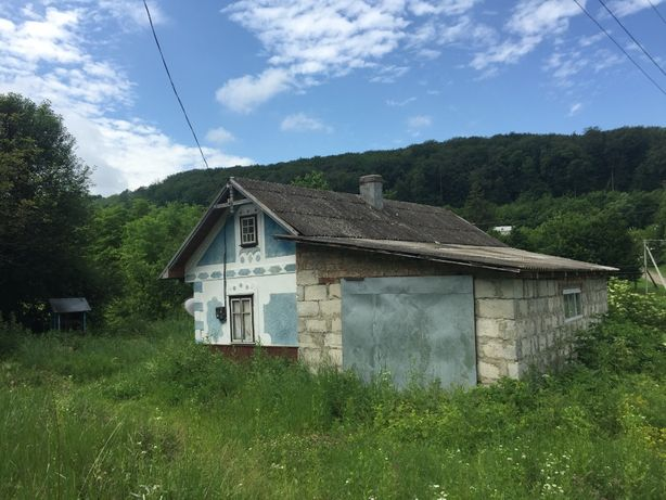 Жилий будинок та земельна ділянка 36 соток в с. Стрілецький Кут