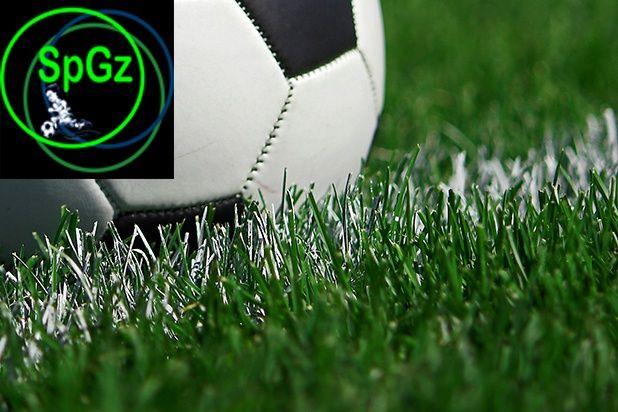 Спорт-3 Газон с живучестью 2,5-3 года трава семена