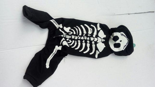 Ubranko ubranie dla psa 35cm Activ Pet