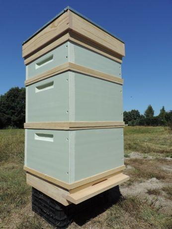 Ule wielkopolskie, styrodur, pasieka, ul, pszczoły