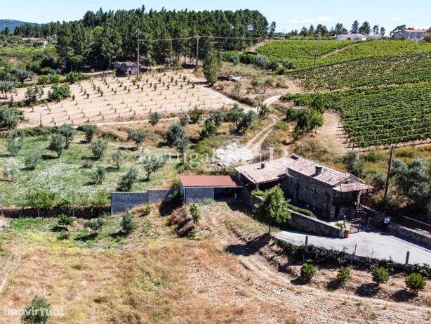 Quintinha rural com 16.000m2 com casa em xisto